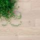 parquet bois massif chêne